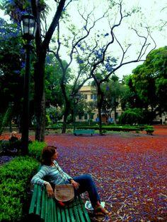Ciudad de Buenos Aires PH: Josefina Salerno