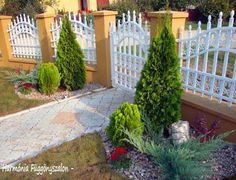 See related links to what you are looking for. Garden Park, Garden Plants, Sweet Home, Sidewalk, Outdoor Structures, Gardening, Outdoor Decor, Nature, House