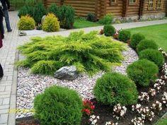 -  Source by petlovanah  - English Cottage, English Country Gardens, English English, Modern English, Front Garden Landscape, Flower Landscape, Stone Landscaping, Garden Landscaping, Back Gardens