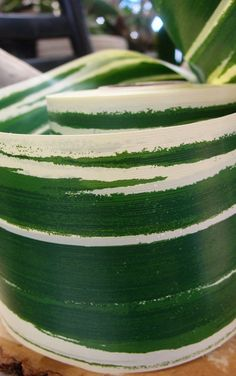 """Might be useful for weaving a wall. Intended to be used inside vases for the look of leaves. 