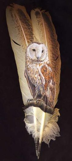 Mark Ricker: barn owl painted on feathers