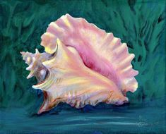 Did you really hear the ocean when you were a kid? This is my favorite seashell