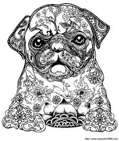 ausmalbild Ein kleiner Hund