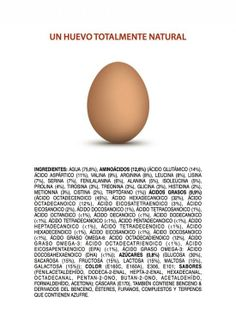 Ingredients-of-an-All-Natural-Egg-SPANISH