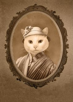 Animal Portraits.