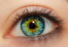 Central heterochromia blue green It's not iridescent but it looks like it should be.