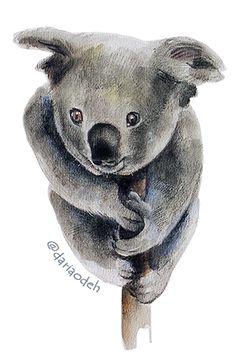 Koala bear illustration Bear Illustration, Teddy Bear, Animals, Animales, Animaux, Teddy Bears, Animal, Animais