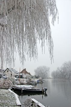 Winter in Holland || The Netherlands