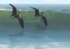 Lance a pesca en vuelo Jurásico.