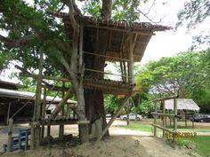 Храм Истины. Таиланд. 2013