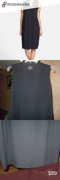 EILEEN FISHER V Neck Lantern Jersey Dress!!  XS/TP NEW---NO TAGS---POPULAR Style Dress From EILEEN FISHER!!  The Lantern Dress----BLACK with V Neckline--Pull Over with Seam Detail *****16.5 inches across Bodice and 39 inches for your Length***Viscose-Lycra Blend -NICE!! Eileen Fisher Dresses