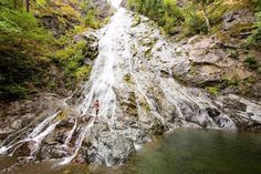 Waterfall therapy. #rockybrookfalls #polarbear #wildsideWA #hoodcanal #travel #nature #fun #happy #waterfall #pretty