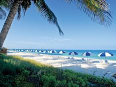 La Playa Beach Resort, Naples, FL