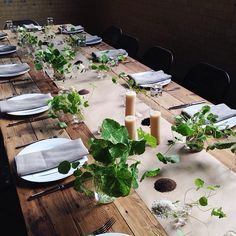 We grew mini nasturtiums in a glass house just for this Kinfolk dinner at Butterland last night! @butterland_  #kinfolkgatherings2014