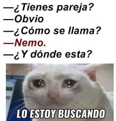 """Top LOL Memes En Espanol Memes That will make you laugh and funny for whole day.So scroll down and read out these """"Top LOL Memes En Espanol"""" and i'm sure these """"Top LOL Memes En Espanol"""" will make you laugh out loud. Funny Spanish Memes, Spanish Humor, Funny Jokes, 9gag Funny, Crazy Funny, Dating Humor, Stitch Disney, New Memes, Memes Humor"""