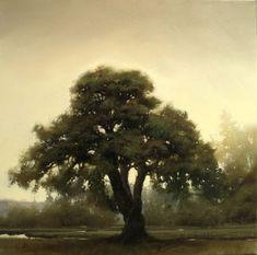 Scots Pine at Dawn by Renato Muccillo