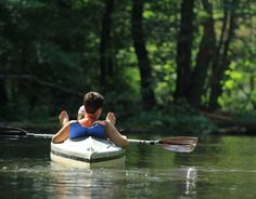 Kayaking enthusiasts in Poland can swim along picturesque, solitary routes on which wild vegetation and rare animals can be observed.