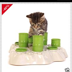 Cat Supplies 2019 New Style Catch Interactive Cat Feeder