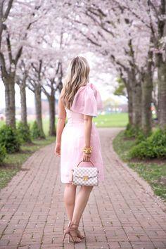 Under the Cherry Blossoms ~ Suburban Faux-Pas