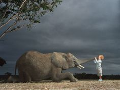 Elephant and a kid by Tim Flach
