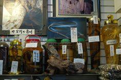 힘못쓰는 남정내들 한 번 잡숴바! 요강을 깬다는 비얌술(뱀술)..칠점사와 구렁이등이 보인다 20130421 photo by sewoo