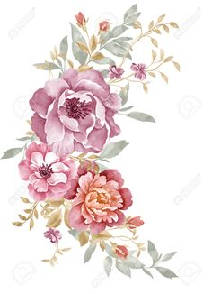 watercolor illustration flowers - Buscar con Google