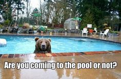 Are you coming to the pool?