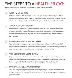 Healthy Weight Loss Motivation >>> Details can be found by clicking on the image.