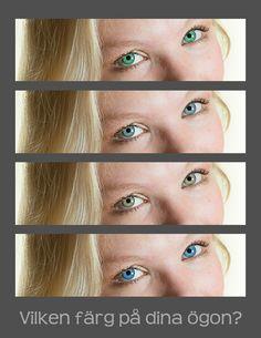 Vilken ögonfärg vill du ha? #fotolillan #öga