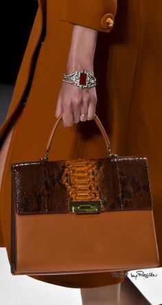 forlikeminded:Shiatzy Chen - Paris Fashion Week - Fall 2015 via: Classic Style, My Style, Copper Color, Autumn Fashion, Paris Fashion, Brown Fashion, Color Themes, Purses And Bags, Fashion Accessories