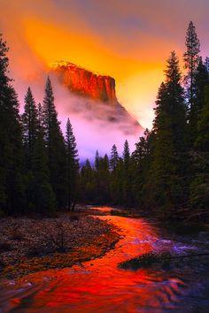 El Capitan in Yosemite Wonderful Places, Beautiful Places, Amazing Places, Yosemite National Park, National Parks, Places To Travel, Places To See, California Camping, Walk In The Woods