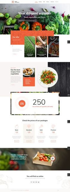 20 web design inspiration for the modern website template featuring beautiful full-width photos, dynamic click-through lists, and a subtle bohemian vibe. Everything about this design can be changed in this website design inspiration Food Web Design, Site Web Design, Website Design Layout, Wordpress Website Design, Web Design Services, Web Design Company, Web Layout, Ux Design, Modern Design