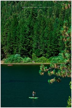 Hume Lake, Sequoia National Park, California.    MAKING THIS A MUST DO WEEKEND GET AWAY FOR MIKE, KODIAK AND MYSELF :)