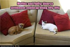 Pre-pet-tual Agreements  Ad