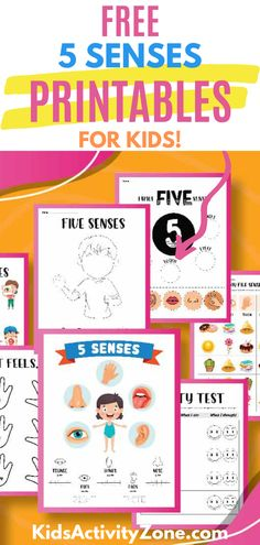 This fun activity bundle includes free downloadable printables for learning geared towards preschoolers and kindergarteners. There are 8 pages full of activities! They will learn to trace the words of the five senses including eyes, ears, tongue and nose. There's even a matching game to help them learn! Homeschool Worksheets, Free Worksheets, Teacher Worksheets, Senses Activities, Fun Activities To Do, My Five Senses, Teaching Ideas, Ears, Printables