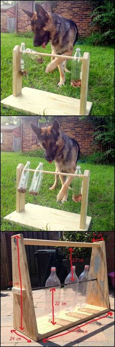 How To Make A Spinning Plastic Bottle Dog Treat Game #dogfun