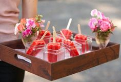 This article contains a wide variety of alcoholic Popsicle recipes.  It includes recipes for Popsicle margaritas, mojitos, and other cocktails as well as recipes with beer and with tequila.