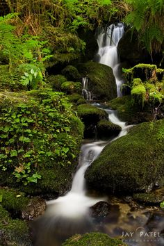 Stream Falls in Redwood National and State Parks, California United States © Unknown Beautiful Waterfalls, Beautiful Landscapes, Beautiful World, Beautiful Places, Places To See, Places To Travel, Parque Natural, California Travel, Northern California