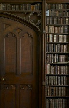 Gorgeous old books and display. Makes me think of Gothic libraries. Beautiful Library, Dream Library, Library Books, Grand Library, House Beautiful, Home Libraries, Old Books, Book Nooks, Reading Nooks