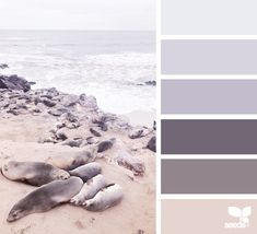 today's inspiration image for { creature cuddles } is by . thank you, Cristiana, for another amazing image share! Best Bedroom Colors, Bedroom Color Schemes, Colour Schemes, Design Seeds, Home Decor Colors, Colorful Decor, Interior Colors, Paint Color Chart, Paint Colors