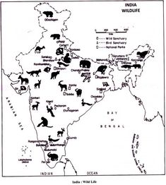 endangered species endangered species and animal save wild life essay wildlife in biosphere reserves and conservation map