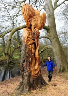 Guerilla Tree Sculptor in North Yorkshire Identified (is not Banksy) wood trees sculpture England Tree Carving, Art Japonais, Tree Sculpture, Wooden Art, Land Art, Tree Art, Oeuvre D'art, Amazing Art, Awesome