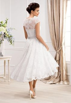 133272867142 Irenwedding Womens V Neck Capped Applique Lace Beaded Sash Short Beach Wedding  Dress Ivory     You can get more details by clicking on the image.