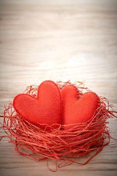 Любовь, День Святого Валентина. Сердечки на дерево. Пара гнездо - искусство и…