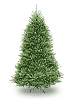 Full-bodied and fit for a festive look, the Dunhill Fir Artificial Christmas Tree from National Tree Company is a wonderful holiday addition to your seasonal decorations. The hinged construction makes this tree easy to set up and store. Best Artificial Christmas Trees, Artificial Tree, Christmas Store, Christmas Fun, Natural Christmas, Christmas Goodies, Beautiful Christmas, Holiday Fun, Party