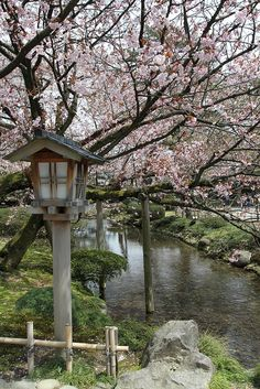Kenroku-en Garden, Kanazawa 3 by Planettrekker on Flickr.