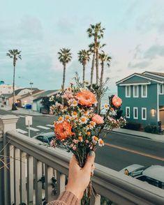 Flowers Vintage Botanical Flora 61 Ideas For 2019 Image Tumblr, Wild Flowers, Beautiful Flowers, Peach Flowers, Summer Flowers, Flower Aesthetic, Boho Aesthetic, Spring Aesthetic, Aesthetic Pictures