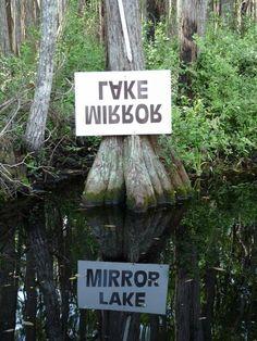 Mirror Lake, Okeefonokee, Florida.