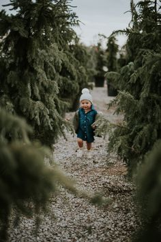 I can't wait to get a picture of Jax like this when we move back to Wisconsin and get our first real tree!