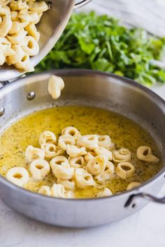 An easy, delicious recipe for Cheese Tortellini in garlic butter sauce. An easy, delicious recipe for Cheese Tortellini in garlic butter sauce. Fast Dinner Recipes, Fast Dinners, Easy Meals, Supper Recipes, Fast Easy Dinner, Easy Weeknight Meals, Pasta Recipes, Cooking Recipes, Cheese Tortellini Recipes